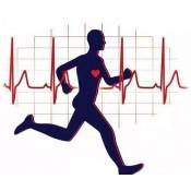 健康監測產品 (41)