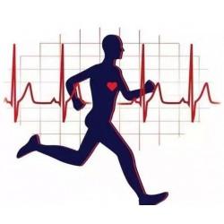 健康監測產品