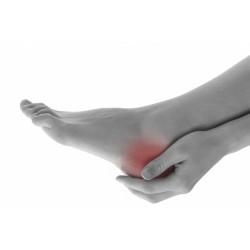 足部健康護托