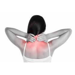 頸部健康護托